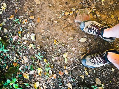 Hiking trail walking shoes free photo image public domain